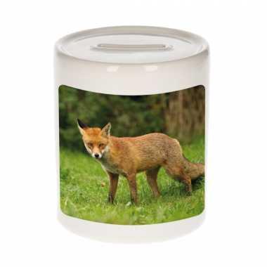 Kinder dieren foto spaarpot bruine vos vossen spaarpotten jongens meisjes