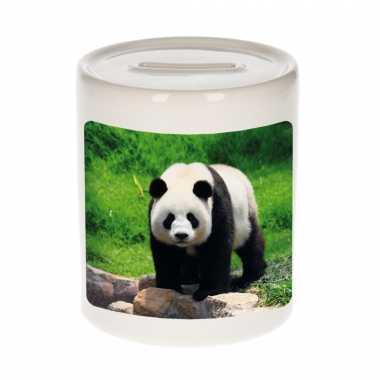 Kinder dieren foto spaarpot grote panda pandaberen spaarpotten jongens meisjes