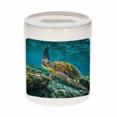 Kinder dieren foto spaarpot zee schildpad schildpadden spaarpotten jongens meisjes