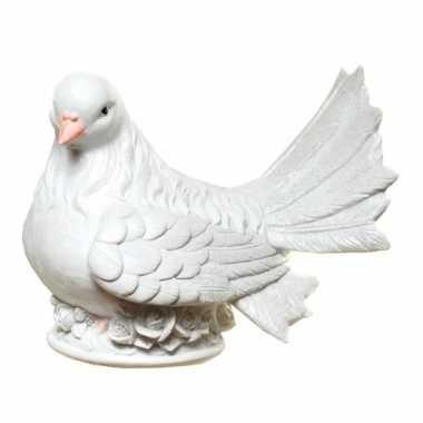 Kinder  Stenen spaarpotten witte duif
