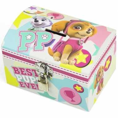 Paw patrol mint/roze kinder spaarpot/geldkistje