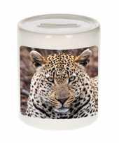 Kinder dieren foto spaarpot jaguar jaguars spaarpotten jongens meisjes
