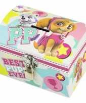 Paw patrol mint roze kinder spaarpot geldkistje